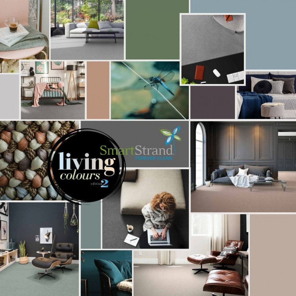 Living Colours 2